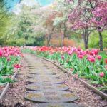 Piękny ,a także schludny ogród to zasługa wielu godzin spędzonych  w jego zaciszu w toku pielegnacji.